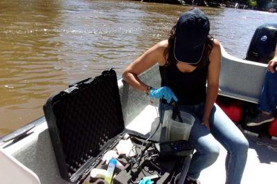 El Delta de Tigre registra una mejora considerable en la situación de las cianobacterias