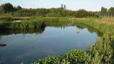 Realizan visitas guiadas por el Humedal del Parque Ecológico Municipal