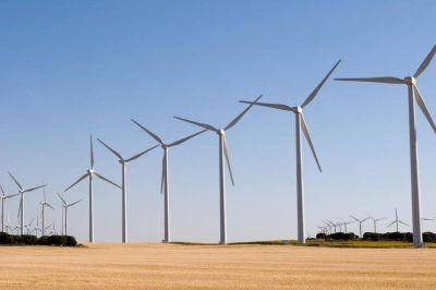 Corporaciones y economía verde