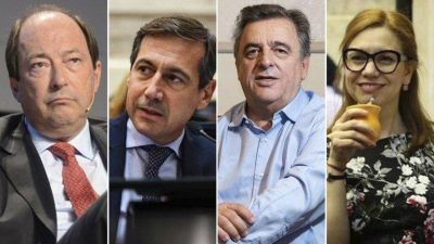 """Un sector de la UCR pidió que los partidos políticos se alejen de """"las dos minorías intensas y movilizadas"""""""