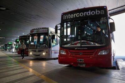Paro de interurbanos: Transporte cuestionó a Aoita y adelantó sanciones