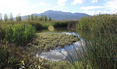 Exigen proteger humedales de montaña en San Cristóbal