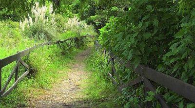 Reapertura de la Reserva Ecológica de Vicente López