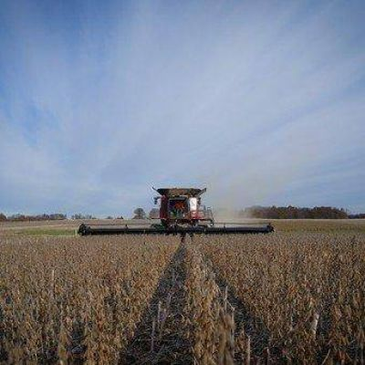 Retenciones: cómo funciona la exportación de alimentos en el mundo