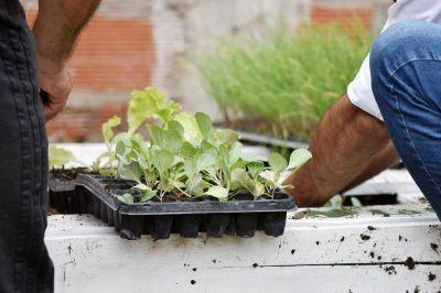 Iniciaron un nuevo ciclo de la propuesta que promueve el cultivo autogestivo de alimentos