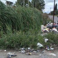 """Encaran un plan para erradicar los """"micro basurales"""": buscan convertirlos en espacios verdes"""