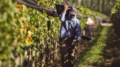 Para UATRE la mejora salarial es prioridad en las actividades rurales