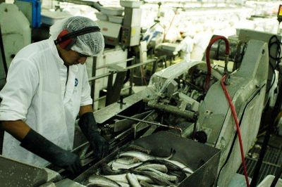 La CAPECh pide reasignar la cuota de merluza de Alpesca