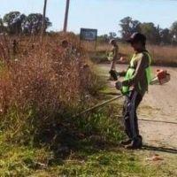 Tandil: Cuidemos nuestros barrios realiza tareas en la calle Figueroa