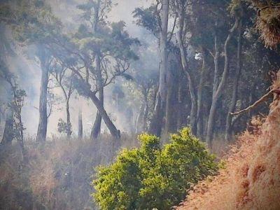 El Municipio pide tomar los recaudos necesarios para evitar incendiosEl Municipio pide tomar los recaudos necesarios para evitar incendios