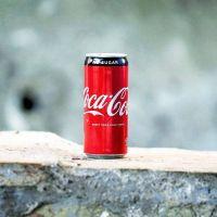 Sostenibilidad: Coca-Cola, desarrollo empresarial e impulso de la sostenibilidad
