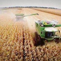 Ley agroindustrial: los cuatro puntos clave que discuten campo y Gobierno
