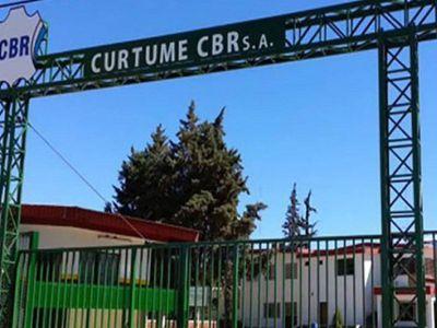 Curtidores señalan faltante de materias primas y alertan sobre 800 fuentes de trabajo que peligran en La Rioja