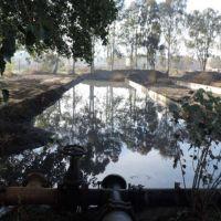 Ambiente continúa controlando los residuos provenientes de la industria pesquera