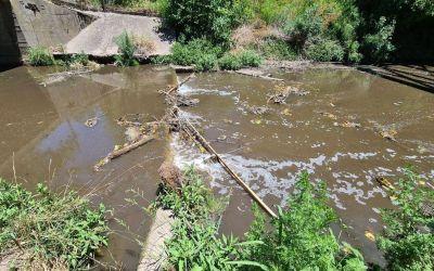 Se movilizan los vecinos del arroyo Rodríguez
