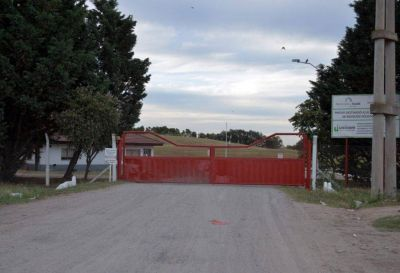 A pedido de la Usina, estudiaron la factibilidad de transformar los residuos urbanos en biogás