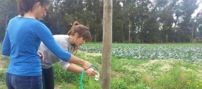 Nitrato y bacterias contaminan el agua en barrios de Mar del Plata