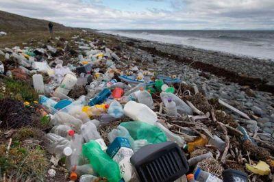 Volvieron a presentar en el Congreso el proyecto de ley para reducir los plásticos de un solo uso