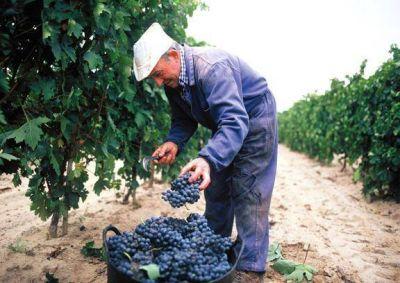 Conciliación obligatoria en la paritaria vitivinícola