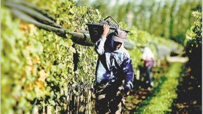 El paro de trabajadores vitivinícolas cumplió su segundo día