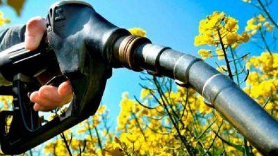Piden por la prórroga de la ley de biocombustibles