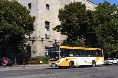 Pliego de transporte y Plan de Reactivación, el debate que se viene en el Concejo