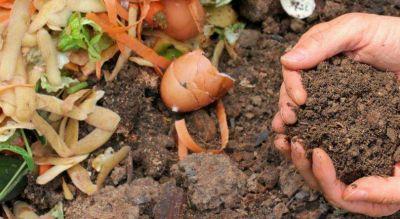 El irremediable acto de cambiar el destino de los residuos orgánicos domiciliarios y transformarlos