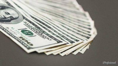 Se vienen 15 días clave para el dólar: 4 frentes que monitorea el mercado con restricciones más duras