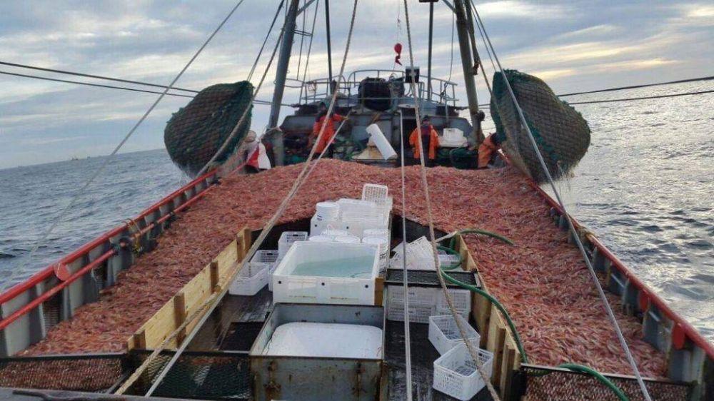 """Pesca: El Simape quiere """"recuperar el salario que se perdió el año pasado"""""""