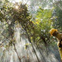 Día de la Tierra, una celebración entre la diplomacia ambiental y la pandemia