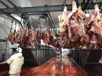 """Troceo de carne vacuna: """"Otro triunfo de la lucha sindical"""", aseguró la FESITCARA"""
