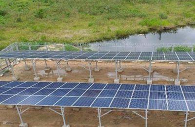 Descubre Como Contribuye El Sector De Las Telecomunicaciones A La Protección De Los Ecosistemas