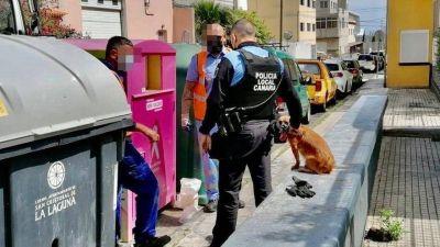 La Policía Local de La Laguna (Tenerife) rescata a un perro que fue abandonado en un contenedor