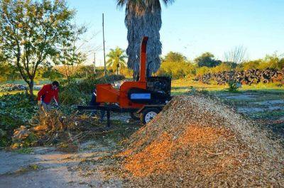 En Victoria se continúa con el reciclado de restos vegetales