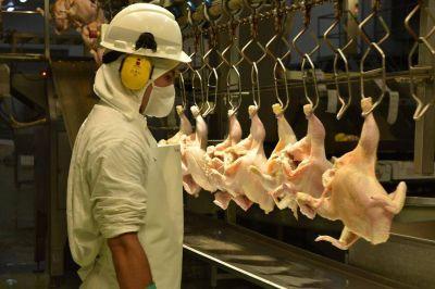 La Federación de Trabajadores de la Alimentación cerró paritaria, en el sector avícola, con una aumento del 36 %