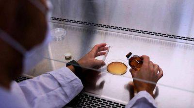Investigadores argentinos logran transformar residuos de soja en productos nutritivos