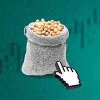 Argentina y la extraña paradoja de la soja: el precio vuela pero el Central lucha para que no salte la brecha del dólar