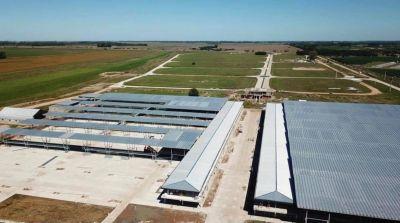 El Mercado de Hacienda de Liniers próximamente abrirá sus puertas en Cañuelas