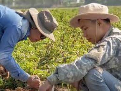 Agricultura Positiva, el nuevo programa de PEPSICO para impactar en su cadena de valor