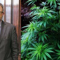 El Gobierno le puso fecha a un proyecto para la industria del cannabis medicinal