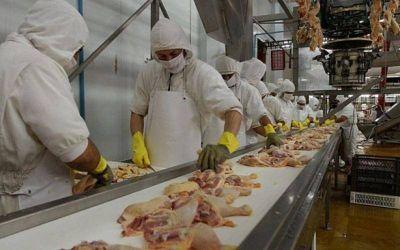 La Federación de la Carne logró un 41,16% para la actividad avícola