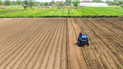 Cuáles son las mejores oportunidades para aprovechar las condiciones del mercado agrícola en Córdoba