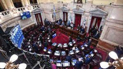 El Senado aprobó el proyecto para establecer restricciones