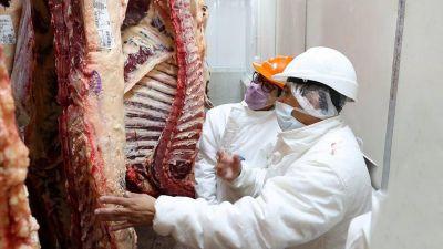 Suba de costos, exportación y remarcación, diferentes visiones sobre el alza del precio de la carne