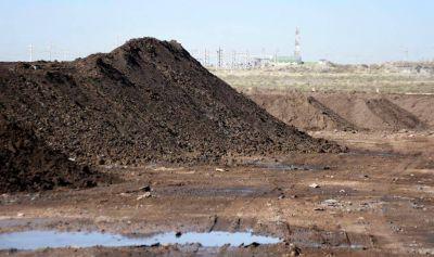 De residuos petroleros a un proyecto de reforestación