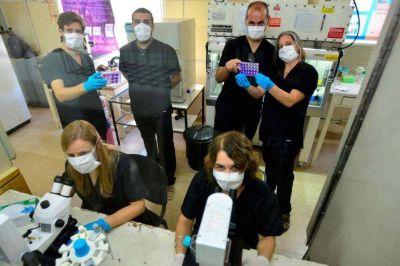 La cuenta de Sputnik V destaca un estudio cordobés sobre cómo la vacuna neutraliza la cepa de Manaos