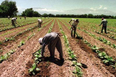 Trabajadores rurales le reclamaron un sueldo mínimo a la Mesa de Enlace