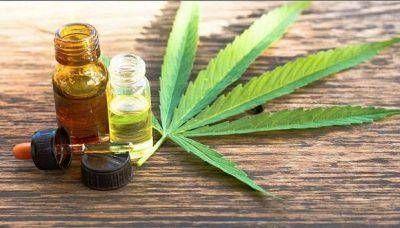 Entró en vigencia la ley de Cannabis Medicinal en Córdoba