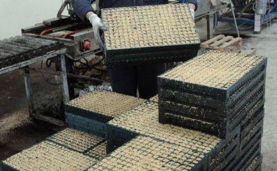Aumenta el reciclado de envases agrarios