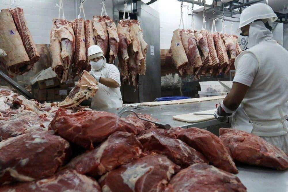 Denuncian a 19 frigoríficos por supuestas irregularidades en la exportación de carne
